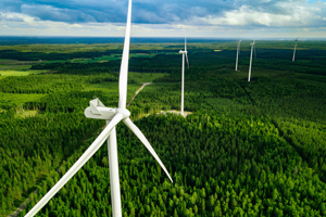 wind turbines in forest