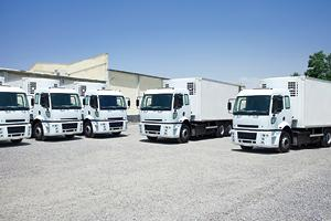 Fleet of trucks at business
