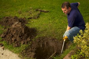 man digging in front yard